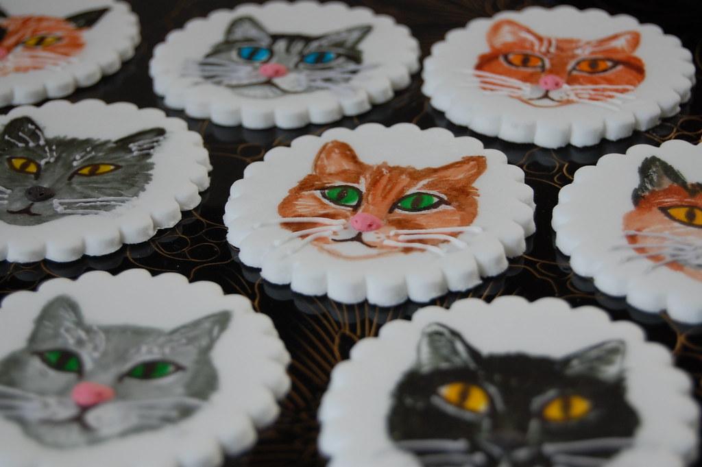 Caitlins Birthday Warrior Cats Charmchang Flickr