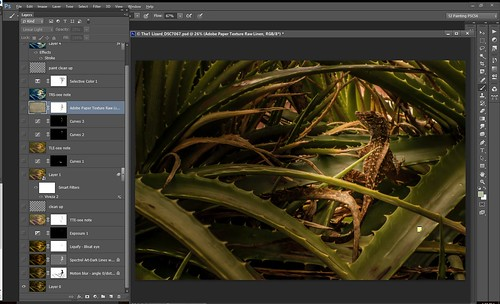 Screenshot of original lizard image and layers panel