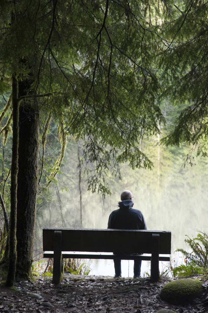 man sitting alone on a bench in a rainforest by a misty la flickr
