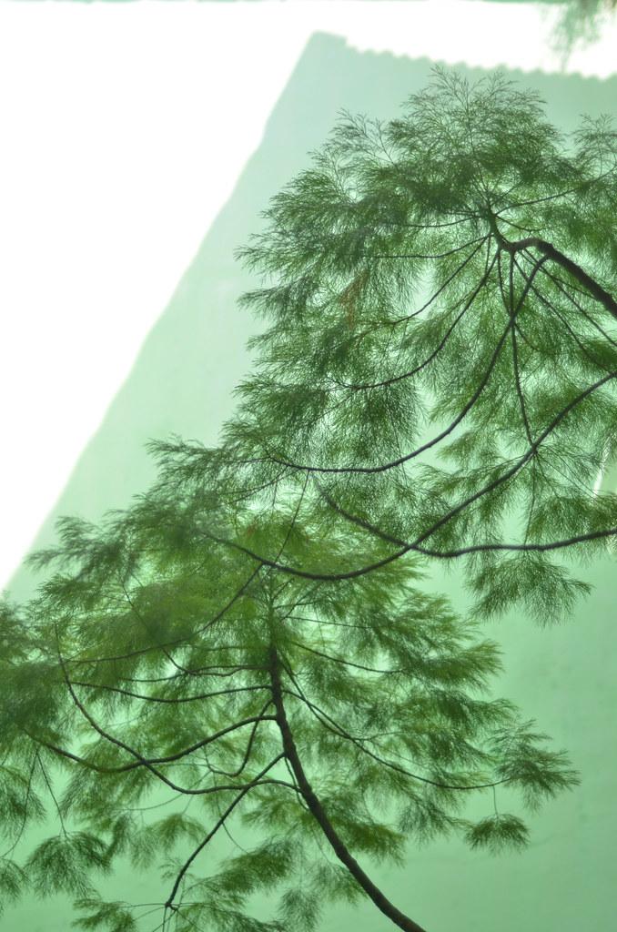 Peranakan Mansion 檳城土生華人博物館
