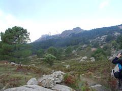 Bergeries de Bitalza avec Capellucciu et Capellu en arrière-plan (2016)