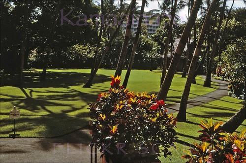 Royal Hawaiian Gardens 1964 The Princess Kaiulani Hotel Ca Flickr