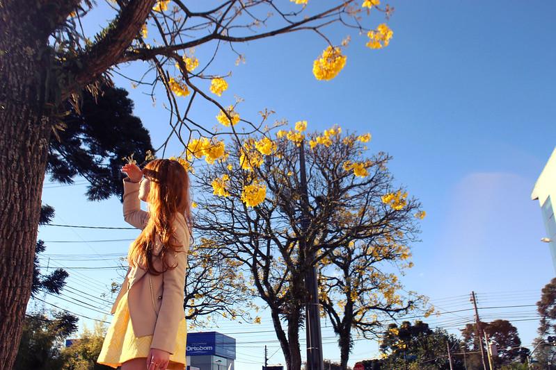 look do dia primavera saia amarela amarelo e branco moda fashion ipê flores curitiba cwb fotografia ruiva blogger blog zara mercearia palladium arezzo forever 21