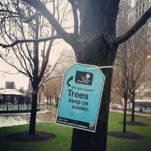 Every tree matters. Dear Metro Manila, lets do something like this. Because trees are still being cut for no reason. Sad. #mortonarboretum #everytreematters #tree #chicago | by The Dafinator