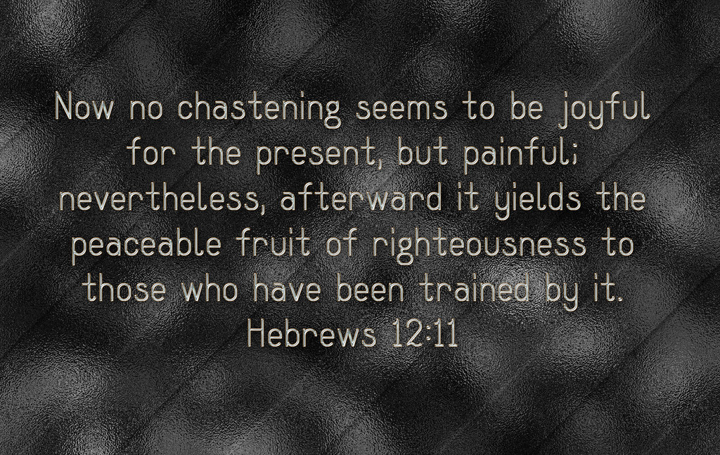 Hebrews 12:11   Now no chastening seems to be joyful for ...