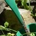 green gardening