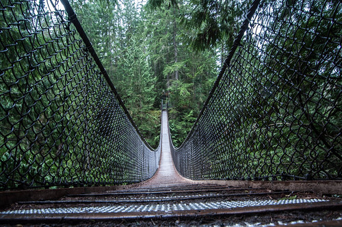 Lynn Canyon Suspension Bridge | by colink.