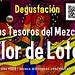 Los Tesoros del Mezcal @ Flor de Loto 04.2013
