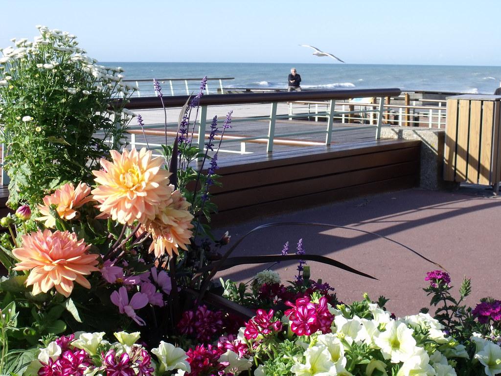 Veules les roses sur le front de mer avant 2013 chambres d 39 h tes et g tes vue mer 76 - Chambres d hotes a veules les roses ...