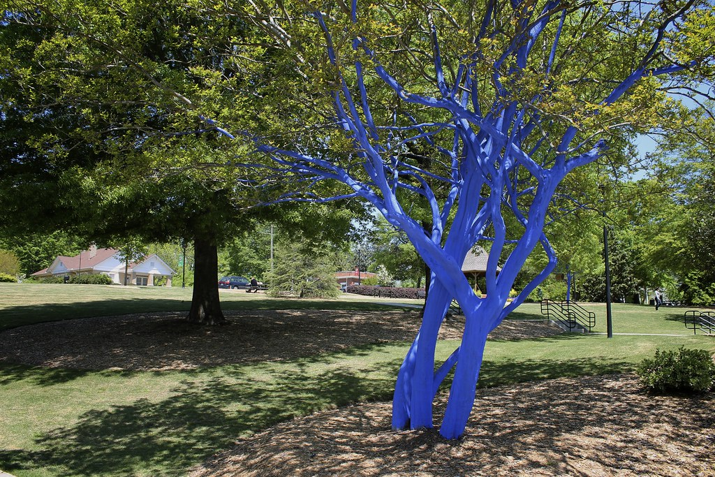 Trees Painted Blue Denver