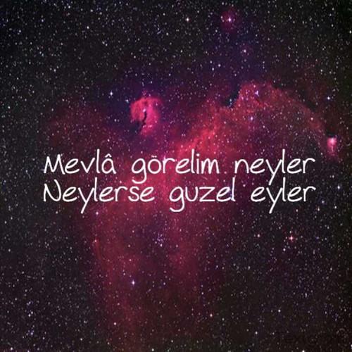 C A Turkey Istanbul Mevla gorelim neyler. ...