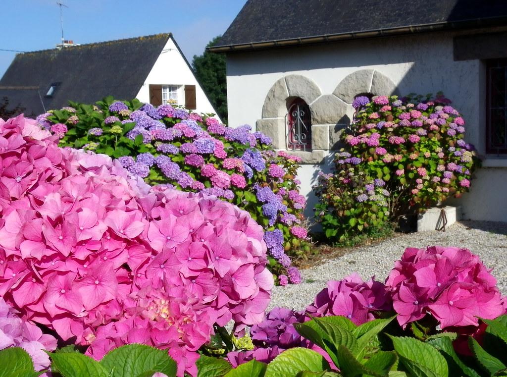 En bretagne une petite maison de conte de f es flickr - Photo de petite maison ...