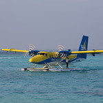 IMG_2472_8Q-TMK_Trans_Maldivian_Airways_(TMA)_De_Havilland_Canada_DHC-6-300_Twin_Otter