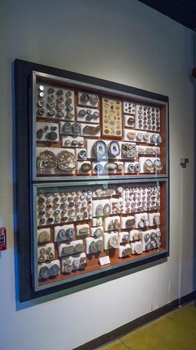 PARI Mineral Collection-009
