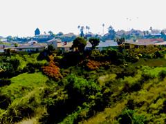 Cutouts of The Baldwin Hills