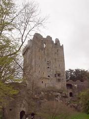Puri Blarney