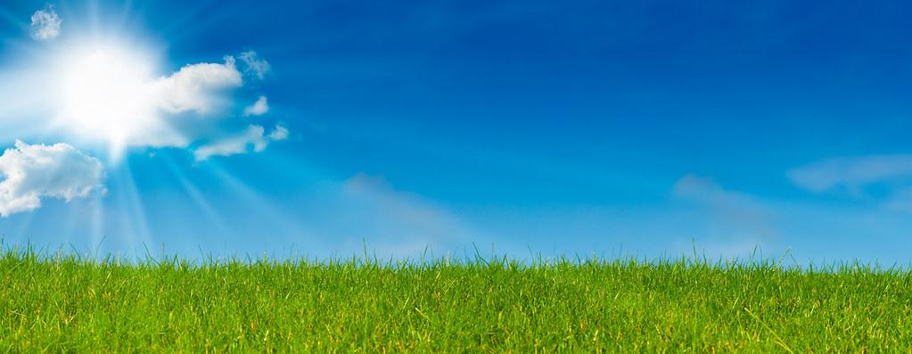 Ciel bleu soleil et herbe verte paysage vert prairie for Paysage vert