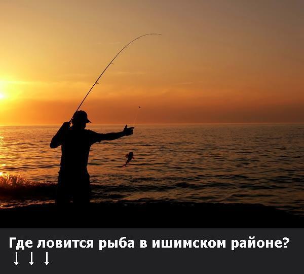 на что ловится рыба карась