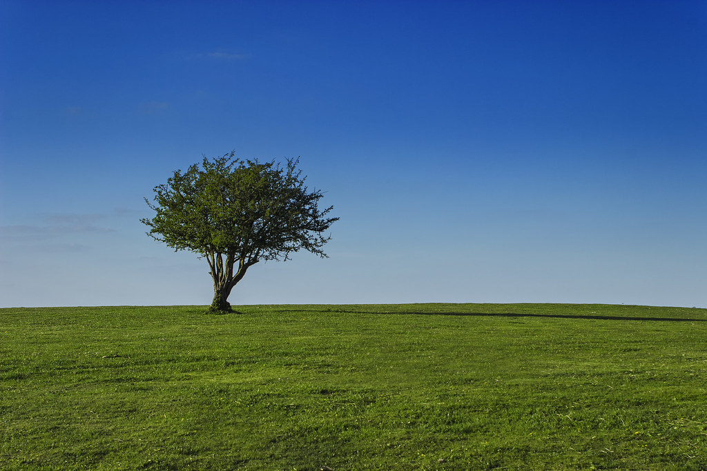 A very simple landscape | Taken somewhere around the ...
