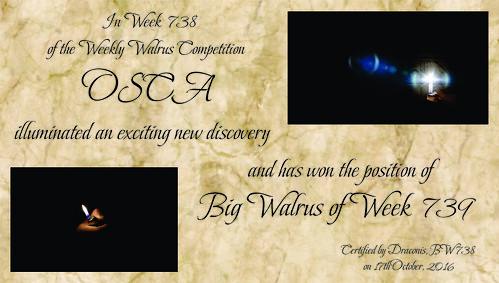WW738 Winner Certificate - Osca