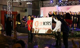 10 Years ICRS: Celebrate Diversity!