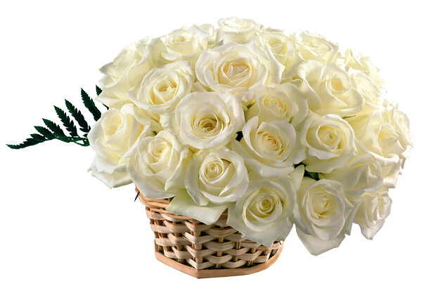2f4794fb8060 White flowers send gifts to Bangladesh from UK