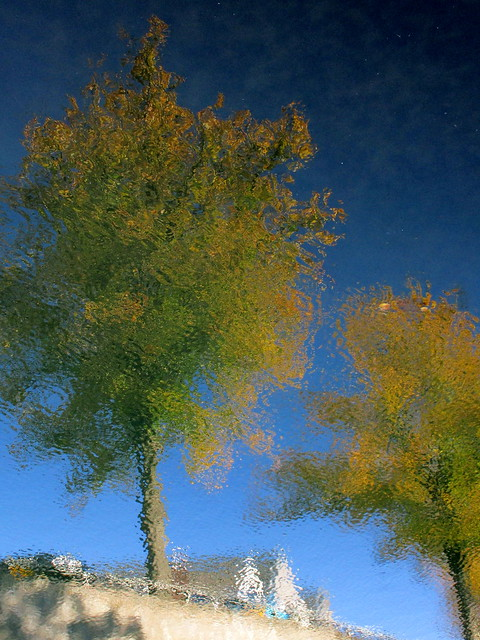 Autumn in Kampen