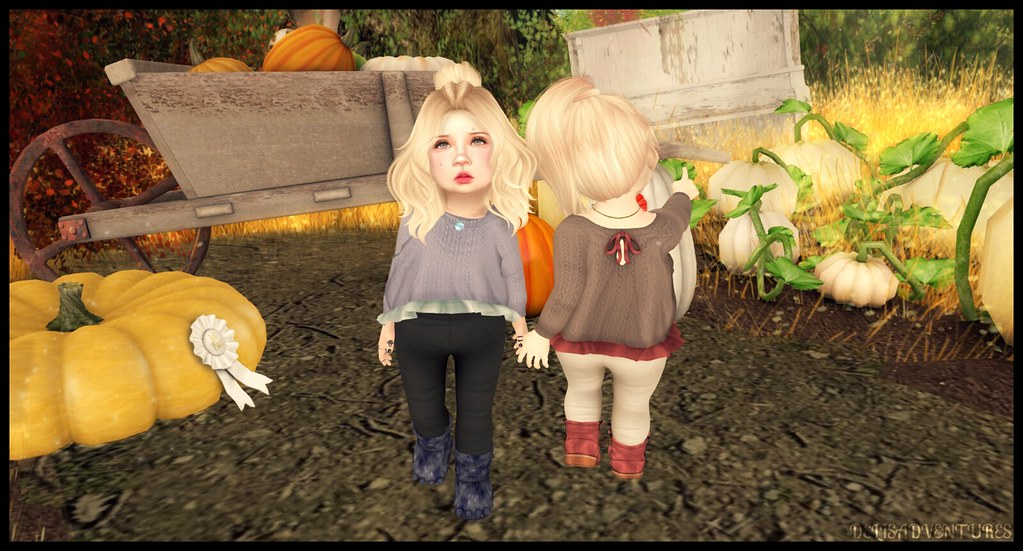 Pumpkin Picking with Candy