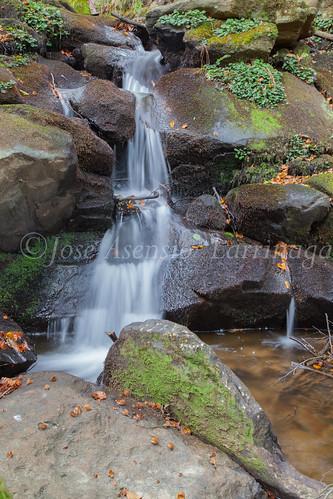 Parque Natural de #Gorbeia #DePaseoConLarri #Flickr      -1471