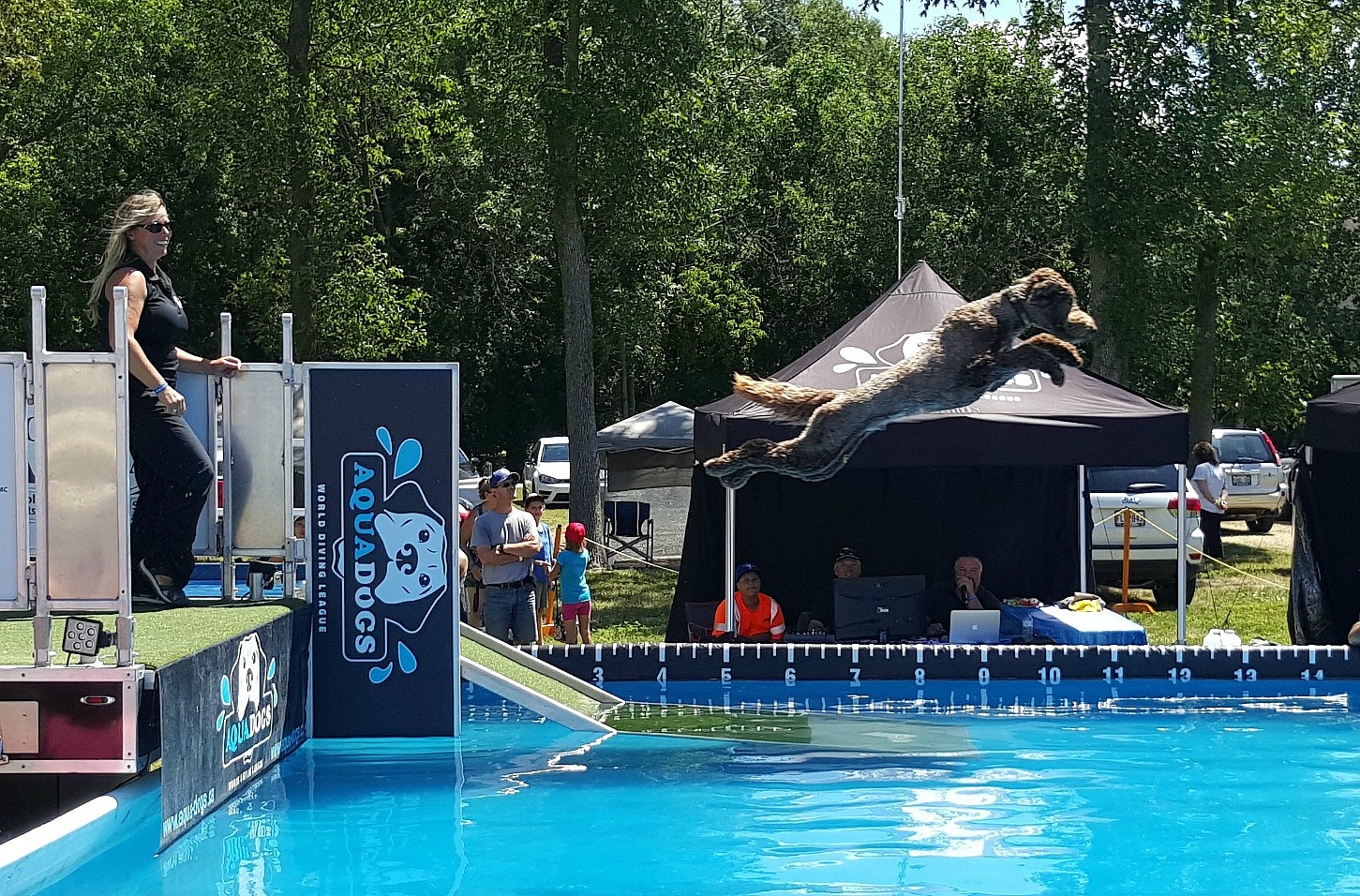 Aqua Dogs Dock Diving Sutton Fair 2016