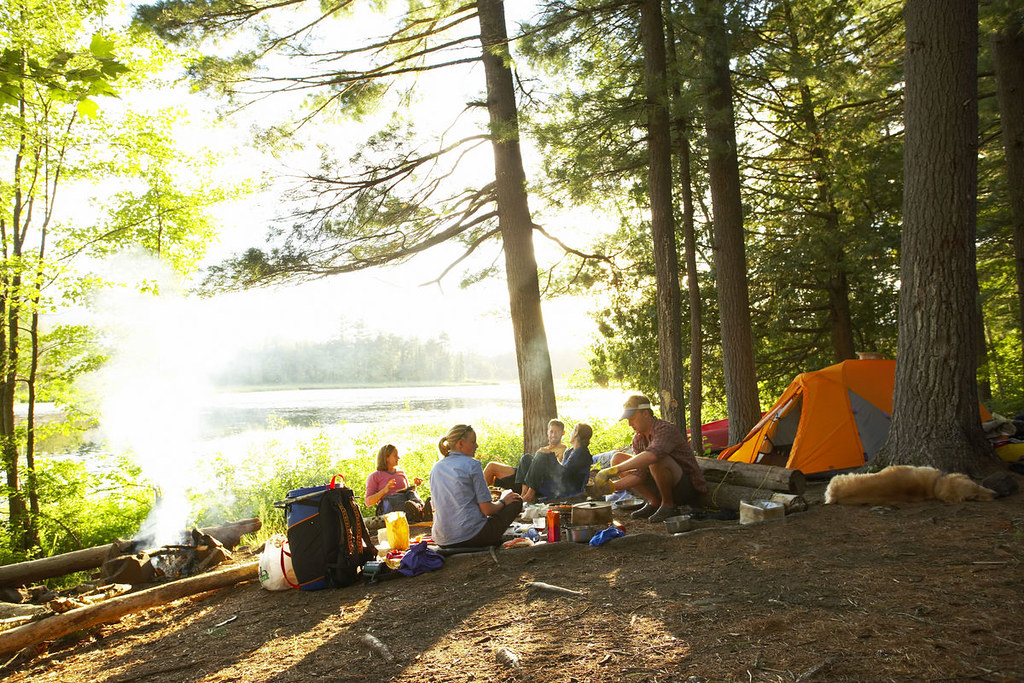 A group of people enjoys a sunny afternoon together while camping amidst tall trees.