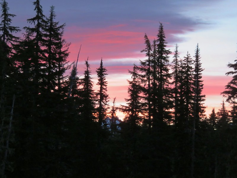 Sunrise from our campsite with North Sister peaking through the trees