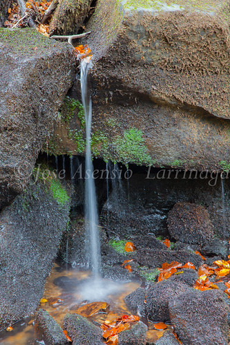 Parque Natural de #Gorbeia #DePaseoConLarri #Flickr      -1468