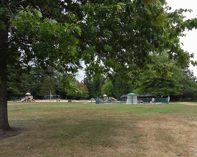 Image shows an expanse of browning lawn with a tree to the left. In the distance, there's a children's play area with slides and swings, and to the center right is a wading pool with a tall green mushroom-shaped structure raining water down.