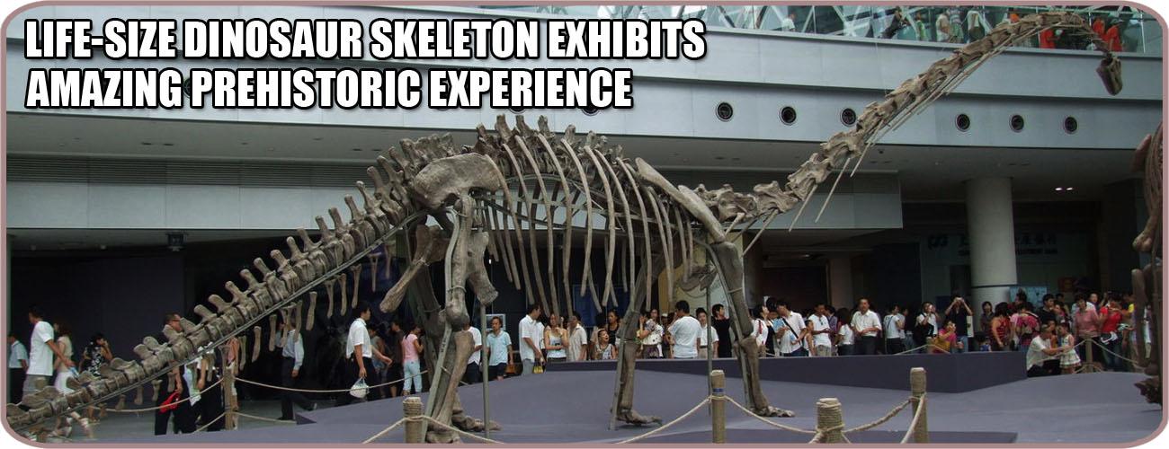 Dinosaur Skeleton Replica Banner