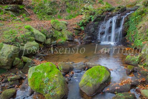 Parque Natural de #Gorbeia #DePaseoConLarri #Flickr      -1473