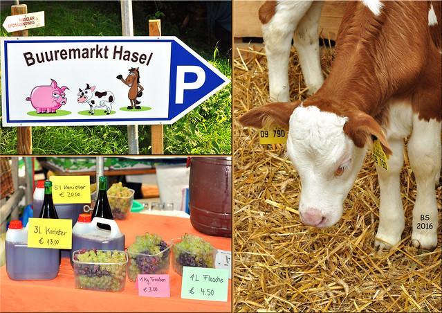 Kleine Schwarzwald-Tour, Oktober 2016 ... Bauernmarkt, Buuremarkt in Hasel ... Fotos: Brigitte Stolle