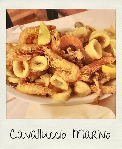 Cavalluccio Marino - Albinia