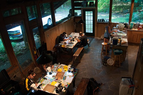 students working at wooden tables in cabin, pinning insects