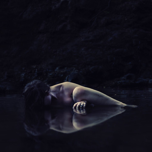 emergence and disturbances | by brookeshaden