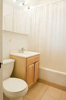 1305_maple_apt_1N_bathroom_1_web | by BJBEvanston