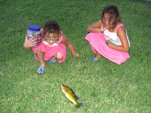 Nietas with Peacock Bass 20120726 | by Kenneth Cole Schneider
