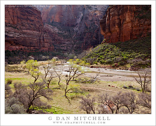 Zion Canyon, Virgin River, Spring | by G Dan Mitchell
