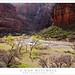Zion Canyon, Virgin River, Spring