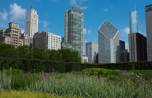 View from Lurie Garden | by Dalliance with Light (Andy Farmer)