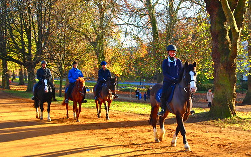 Walking the horses in Hyde Park | by MickyFlick
