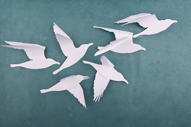 Snow White 3d Bird Flock A Flock Of Handmade Paper