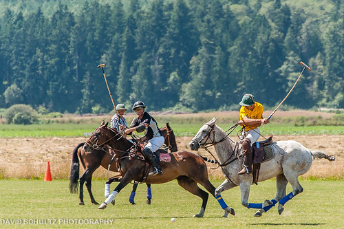Pacific Northwest Polo Governor's Cup 2012 | by dschultz742