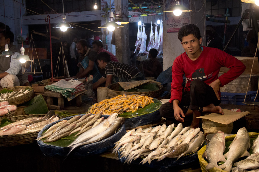 Fish market in Khulna, Bangladesh. Photo by Samuel Stacey,… | Flickr