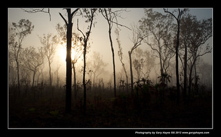 001_Darwin Walkabouts Pt 4 Litchfield National Park | by Gary Hayes
